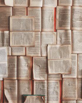 Door een lezing in Perdu vraag ik me af of literatuur je een beter mens kan maken.