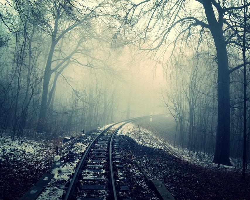 Een verlaten treinspoor midden in het bos trekt spanningsfreaks aan