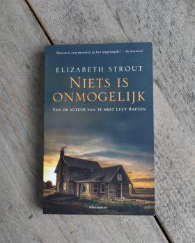De cover van Niets is onmogelijk geschreven door Elizabeth Strout.