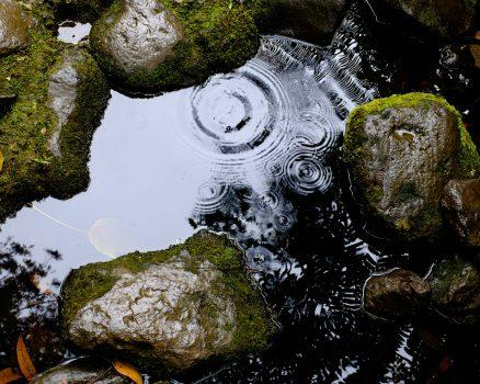 Een steen in het water zorgt voor rimpelgeweld.